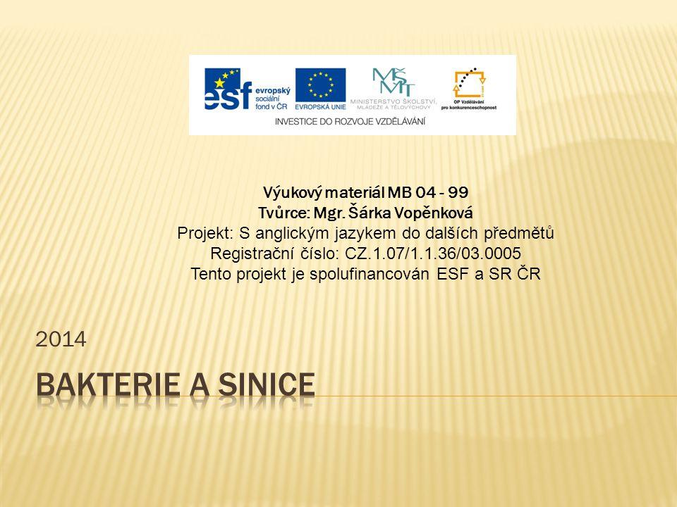 2014 Výukový materiál MB 04 - 99 Tvůrce: Mgr. Šárka Vopěnková Projekt: S anglickým jazykem do dalších předmětů Registrační číslo: CZ.1.07/1.1.36/03.00