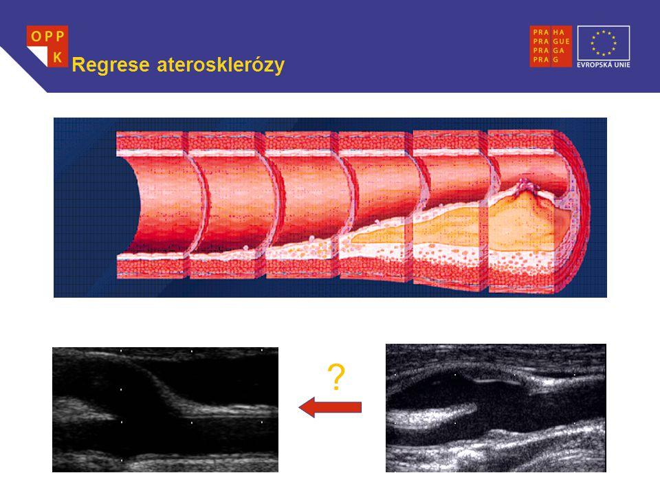 WWW.OPPK.CZ Regrese aterosklerózy ?