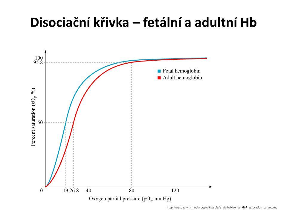 Disociační křivka – fetální a adultní Hb http://upload.wikimedia.org/wikipedia/en/f/fb/HbA_vs_HbF_saturation_curve.png