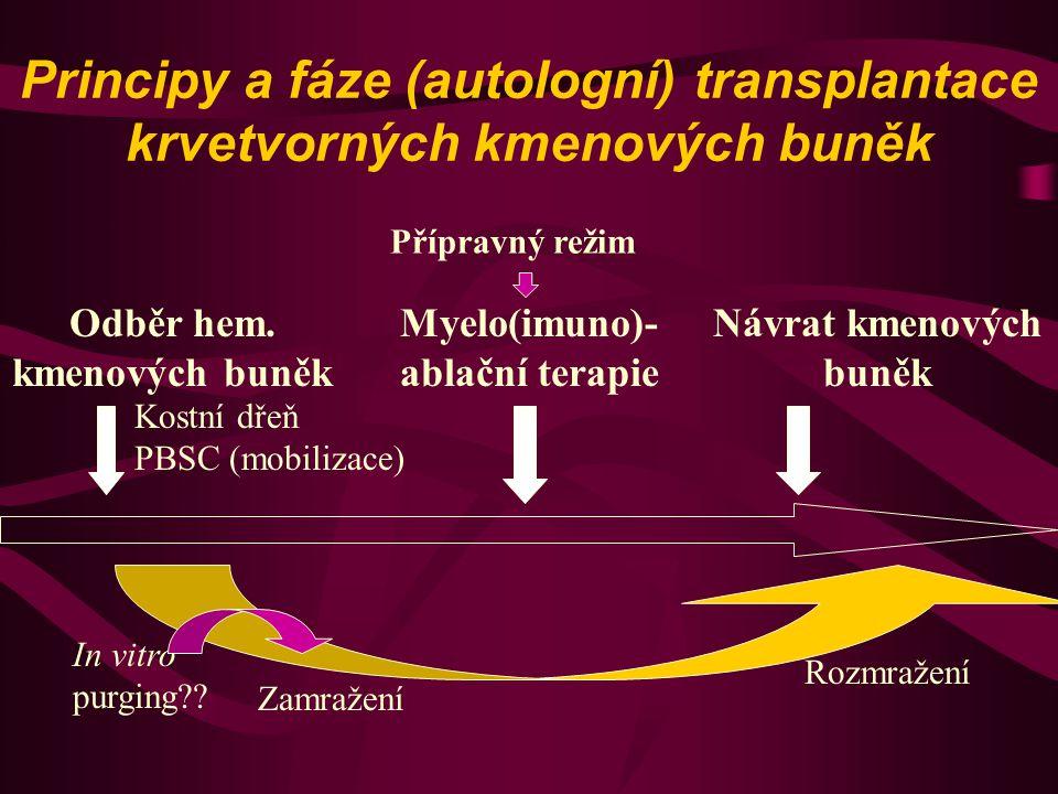 Principy a fáze (autologní) transplantace krvetvorných kmenových buněk Odběr hem. kmenových buněk Myelo(imuno)- ablační terapie Návrat kmenových buněk