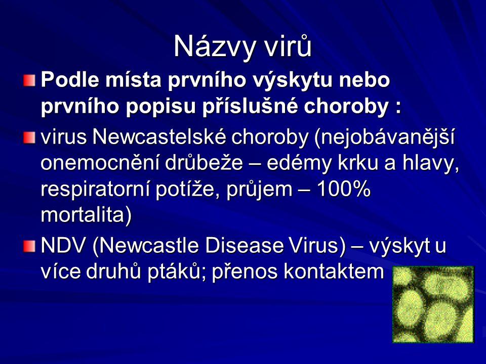 Dělení virů Podle typu nukleové kyseliny –DNA - viry –RNA – viry Podle přítomnosti obalů –Obalené –Neobalené podle hostitelského organismu –Rostlinné viry –Živočišné viry –Viry hub –Bakteriální viry