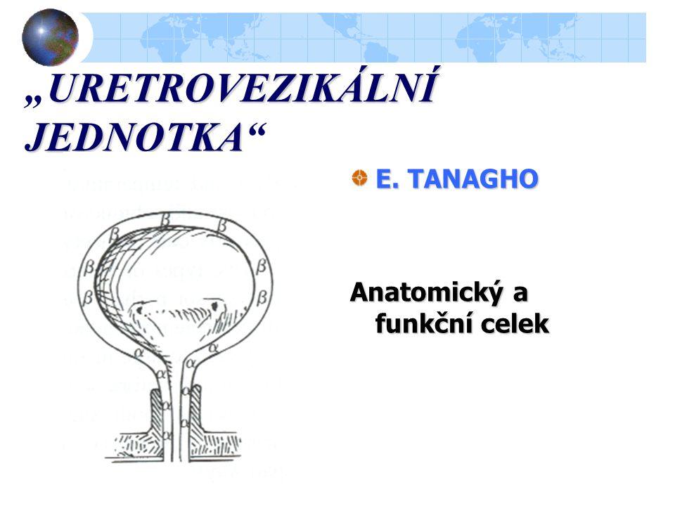 """URETROVEZIKÁLNÍ JEDNOTKA """"URETROVEZIKÁLNÍ JEDNOTKA E. TANAGHO Anatomický a funkční celek"""