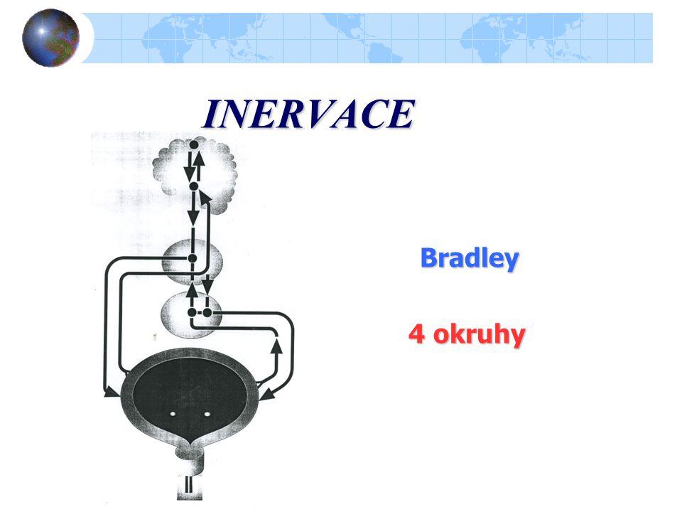 FUNKČNÍ CYKLUS MĚCHÝŘE Skladovací Skladovací fáze (nízký tlak po řadu hodin) Mikční Mikční fáze, mikce (vysoký tlak po dobu sekund) Synergie, dyssynergie ve funkci sfinkteru a detrusoru