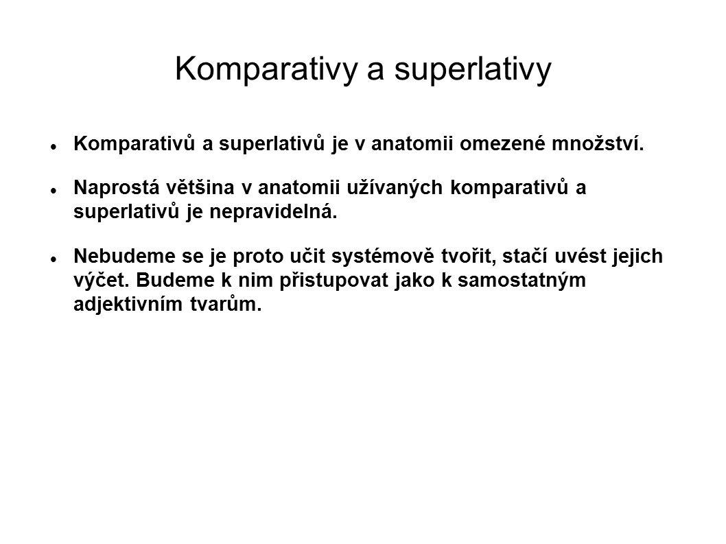 Komparativy a superlativy Komparativů a superlativů je v anatomii omezené množství. Naprostá většina v anatomii užívaných komparativů a superlativů je