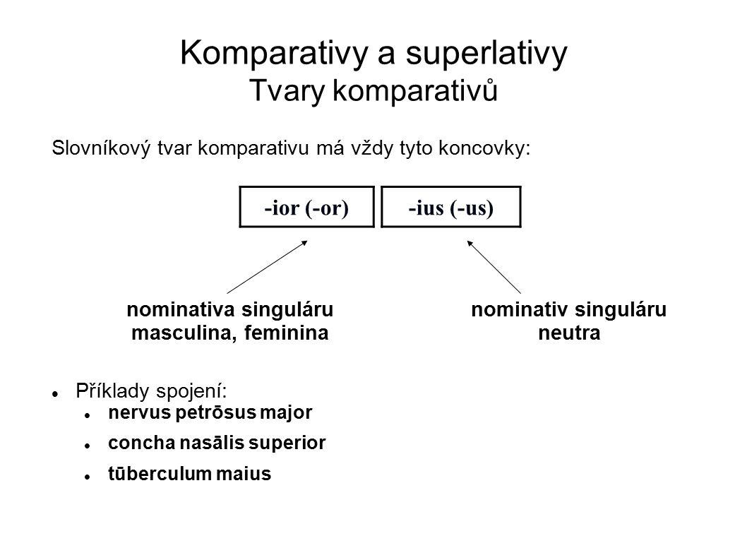 Komparativy a superlativy Tvary komparativů Slovníkový tvar komparativu má vždy tyto koncovky: Příklady spojení: nervus petrōsus major concha nasālis