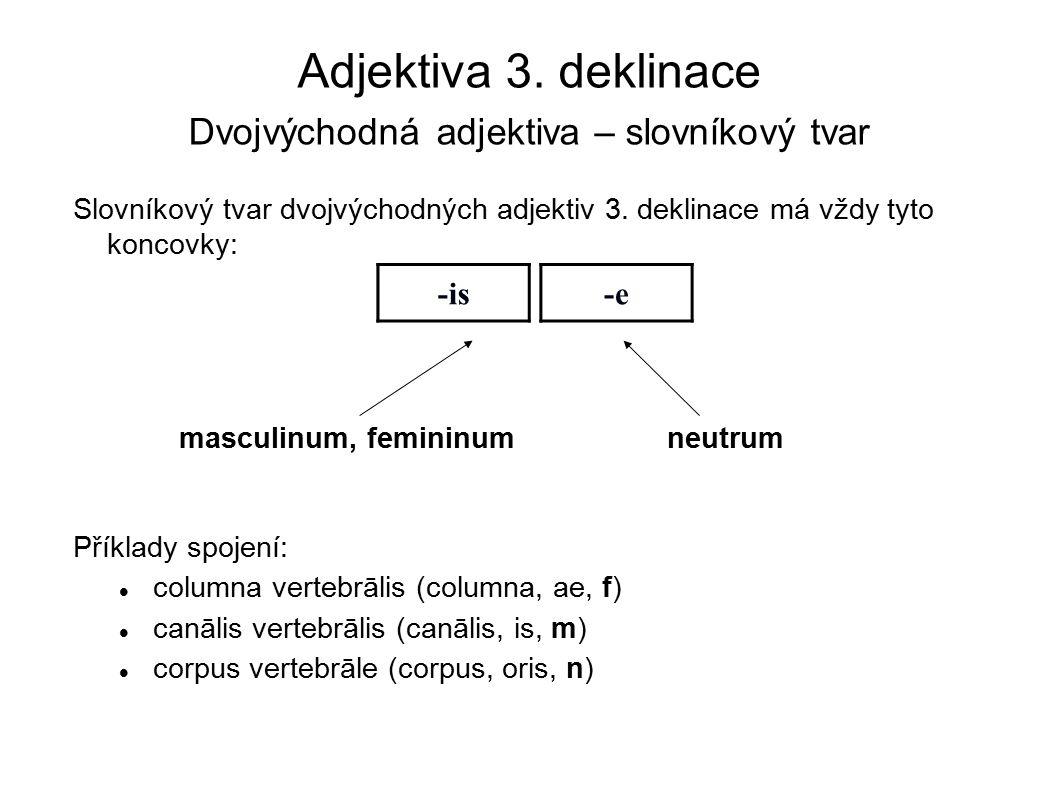 Adjektiva 3. deklinace Dvojvýchodná adjektiva – slovníkový tvar Slovníkový tvar dvojvýchodných adjektiv 3. deklinace má vždy tyto koncovky: Příklady s