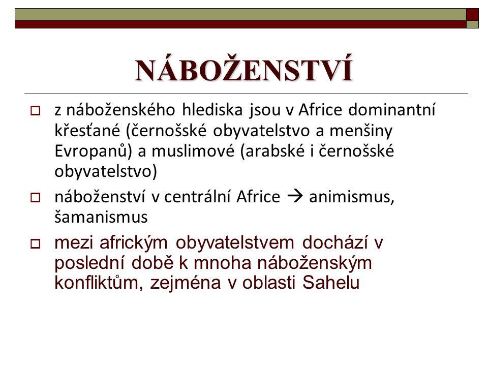 NÁBOŽENSTVÍ  z náboženského hlediska jsou v Africe dominantní křesťané (černošské obyvatelstvo a menšiny Evropanů) a muslimové (arabské i černošské obyvatelstvo)  náboženství v centrální Africe  animismus, šamanismus  mezi africkým obyvatelstvem dochází v poslední době k mnoha náboženským konfliktům, zejména v oblasti Sahelu