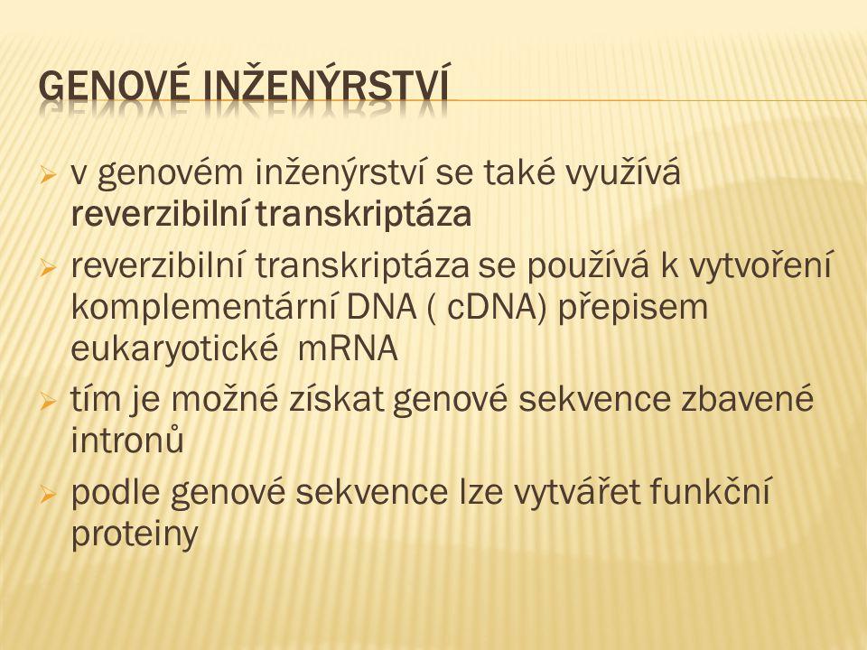  v genovém inženýrství se také využívá reverzibilní transkriptáza  reverzibilní transkriptáza se používá k vytvoření komplementární DNA ( cDNA) přepisem eukaryotické mRNA  tím je možné získat genové sekvence zbavené intronů  podle genové sekvence lze vytvářet funkční proteiny