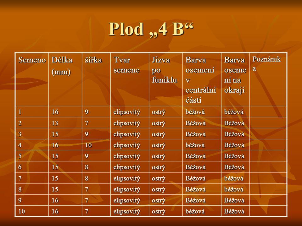 """Plod """"4 B"""" SemenoDélka(mm)šířka Tvar semene Jizva po funiklu Barva osemení v centrální části Barva oseme ní na okraji Poznámk a 1169elipsovitýostrýbéž"""