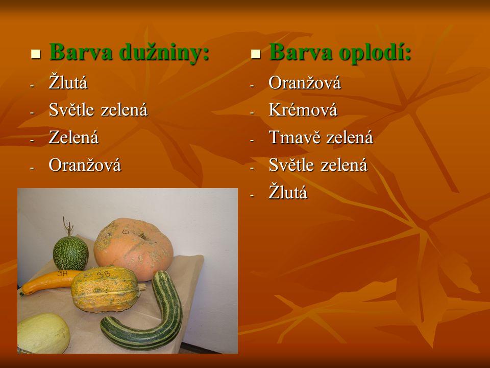 Barva dužniny: Barva dužniny: - Žlutá - Světle zelená - Zelená - Oranžová Barva oplodí: Barva oplodí: - Oranžová - Krémová - Tmavě zelená - Světle zel