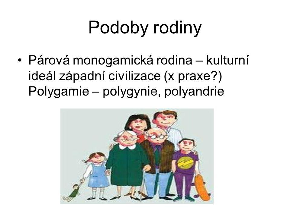 Podoby rodiny Párová monogamická rodina – kulturní ideál západní civilizace (x praxe?) Polygamie – polygynie, polyandrie