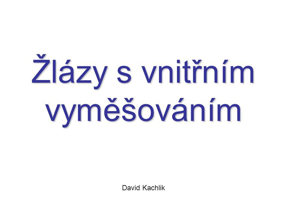 Žlázy s vnitřním vyměšováním David Kachlik
