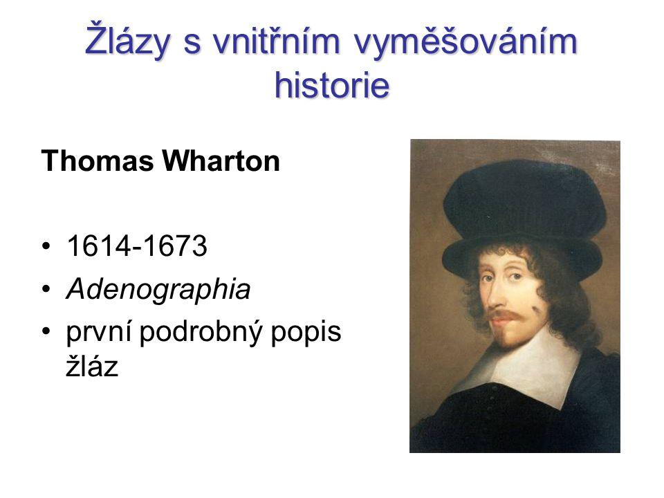 Žlázy s vnitřním vyměšováním historie Thomas Wharton 1614-1673 Adenographia první podrobný popis žláz
