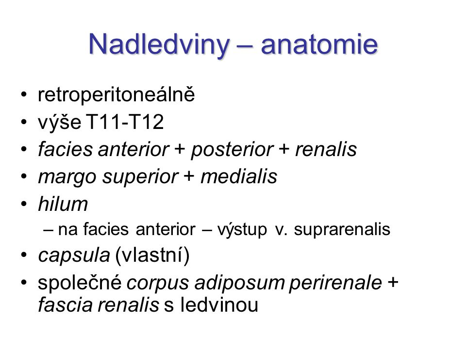 Nadledviny – anatomie retroperitoneálně výše T11-T12 facies anterior + posterior + renalis margo superior + medialis hilum –na facies anterior – výstup v.