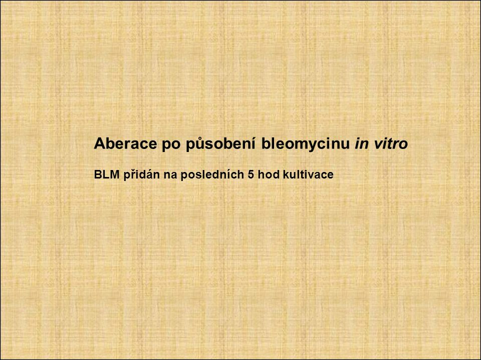 Aberace po působení bleomycinu in vitro BLM přidán na posledních 5 hod kultivace