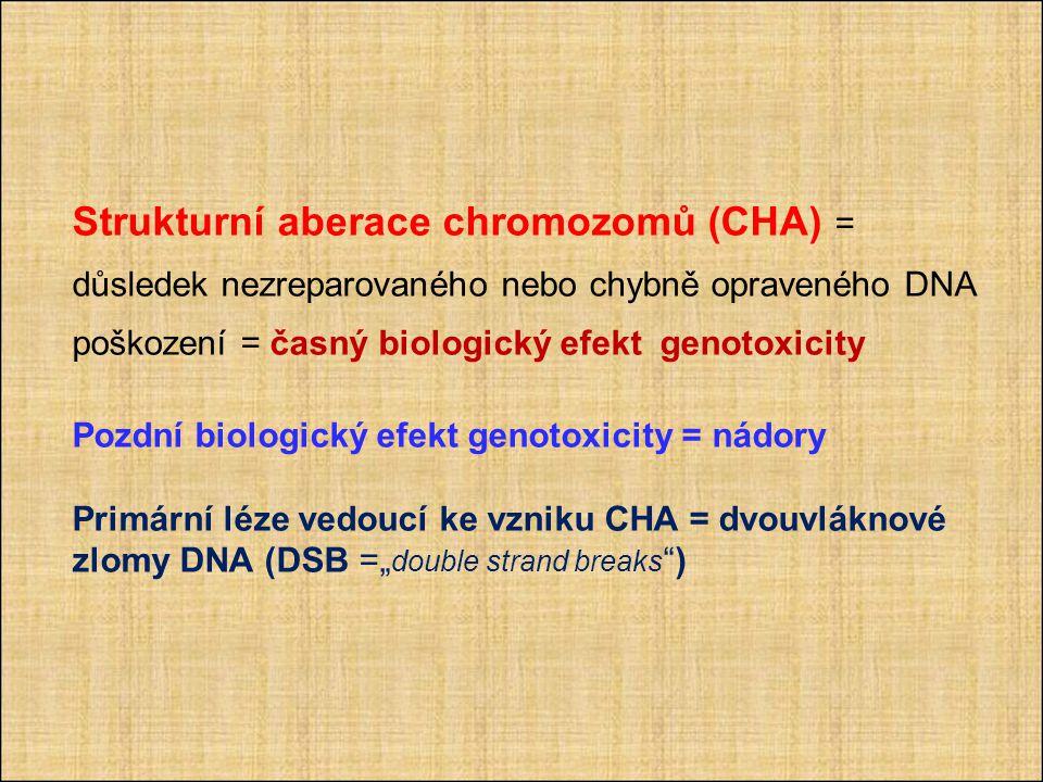 """Strukturní aberace chromozomů (CHA) = důsledek nezreparovaného nebo chybně opraveného DNA poškození = časný biologický efekt genotoxicity Pozdní biologický efekt genotoxicity = nádory Primární léze vedoucí ke vzniku CHA = dvouvláknové zlomy DNA (DSB ="""" double strand breaks )"""