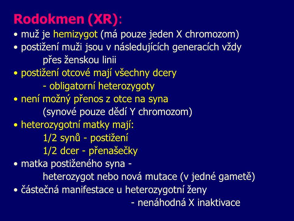 Rodokmen (XR): muž je hemizygot (má pouze jeden X chromozom) postižení muži jsou v následujících generacích vždy přes ženskou linii postižení otcové mají všechny dcery - obligatorní heterozygoty není možný přenos z otce na syna (synové pouze dědí Y chromozom) heterozygotní matky mají: 1/2 synů - postižení 1/2 dcer - přenašečky matka postiženého syna - heterozygot nebo nová mutace (v jedné gametě) částečná manifestace u heterozygotní ženy - nenáhodná X inaktivace