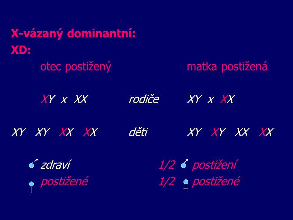 X-vázaný dominantní: XD: otec postiženýmatka postižená XY x XX rodičeXY x XX XY XY XX XXdětiXY XY XX XX zdraví 1/2 postižení postižené1/2 postižené