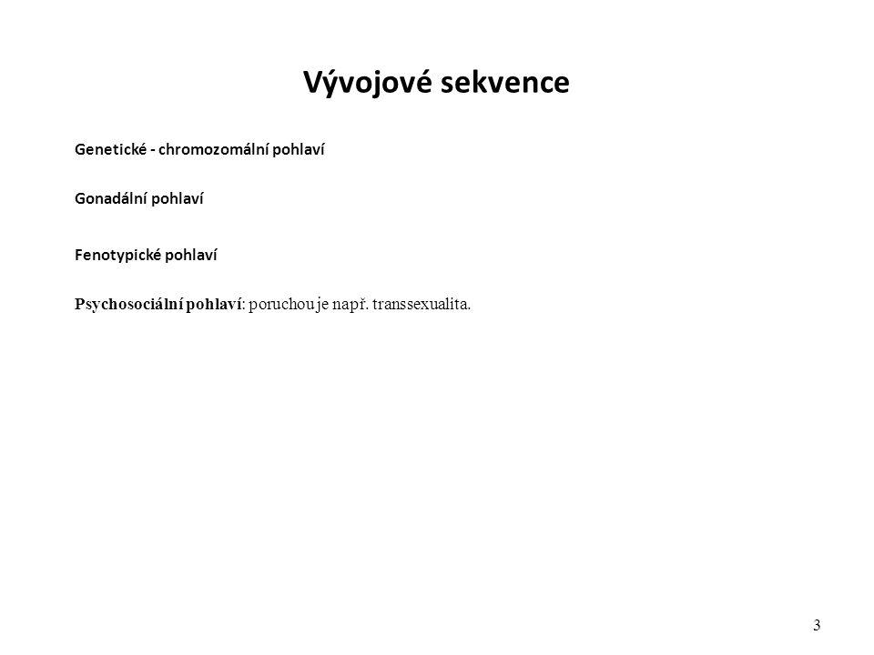 Vývojové sekvence Genetické - chromozomální pohlaví Gonadální pohlaví Fenotypické pohlaví Psychosociální pohlaví: poruchou je např. transsexualita. 3