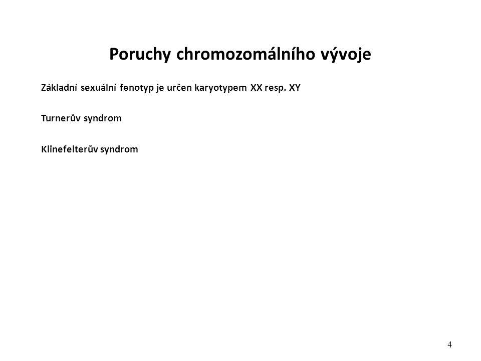 Poruchy chromozomálního vývoje Základní sexuální fenotyp je určen karyotypem XX resp. XY Turnerův syndrom Klinefelterův syndrom 4