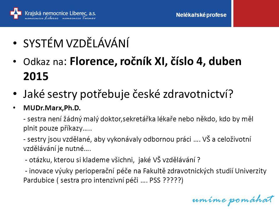 Nelékařské profese SYSTÉM VZDĚLÁVÁNÍ Odkaz na : Florence, ročník XI, číslo 4, duben 2015 Jaké sestry potřebuje české zdravotnictví.