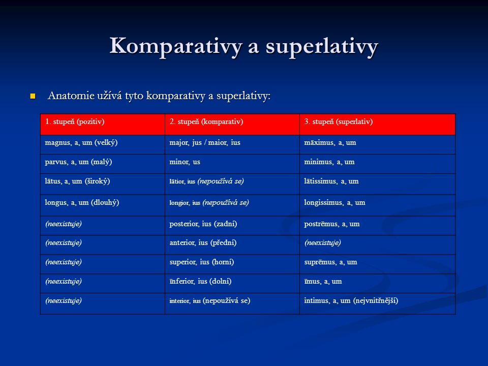 Komparativy a superlativy Anatomie užívá tyto komparativy a superlativy: Anatomie užívá tyto komparativy a superlativy: 1.