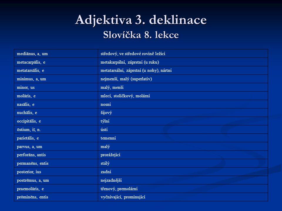 Adjektiva 3.deklinace Slovíčka 8.