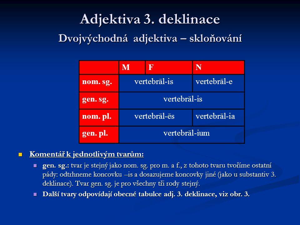Adjektiva 3.deklinace Jednovýchodná adjektiva – poznámka Přes rozdílnou podobu nom.