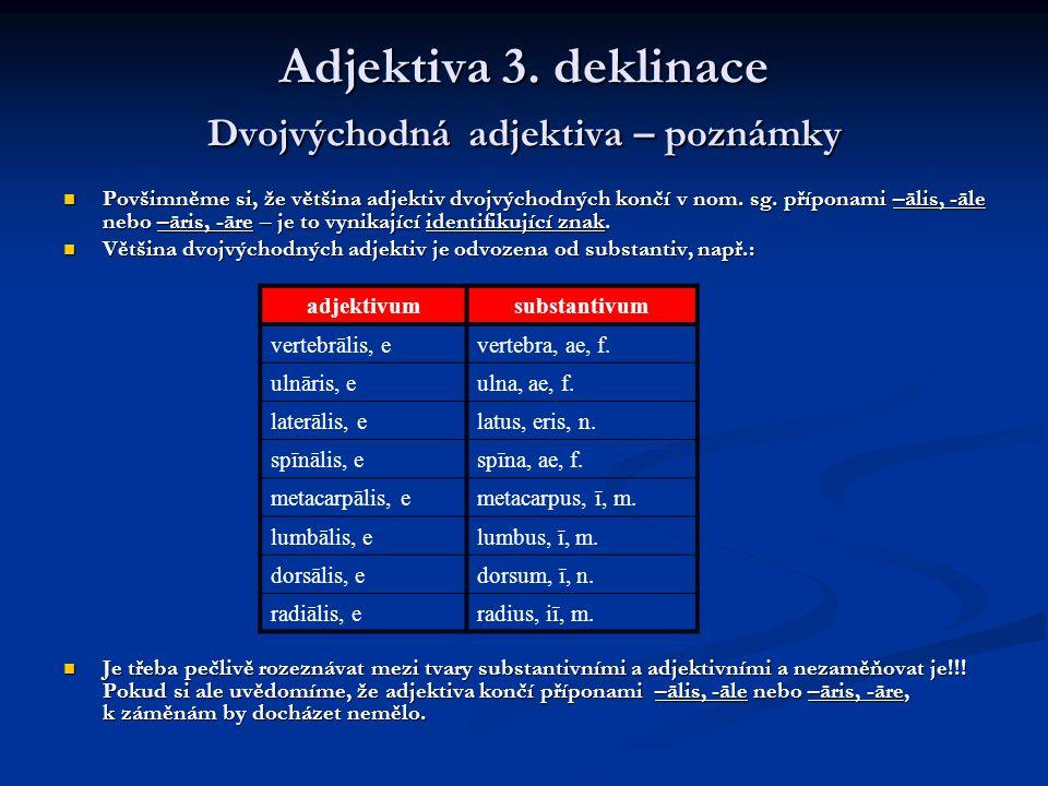 Komparativy a superlativy příklady Příklad 1: Příklad 1: Na humeru pojmenujeme dva hrbolky: Na humeru pojmenujeme dva hrbolky: tūberculum minus (malý hrbolek) tūberculum minus (malý hrbolek) tūberculum majus (velký hrbolek) tūberculum majus (velký hrbolek) Latina při popisu těchto dvou hrbolků vyjadřuje jejich vzájemný vztah (malý – velký), proto užívá komparativních tvarů (menší – větší).