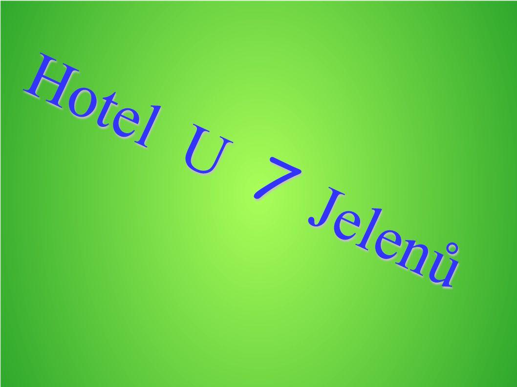 Hotel U 7 Jelenů