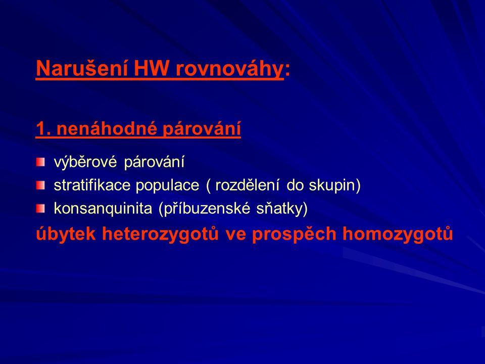 Narušení HW rovnováhy: 1. nenáhodné párování výběrové párování stratifikace populace ( rozdělení do skupin) konsanquinita (příbuzenské sňatky) úbytek