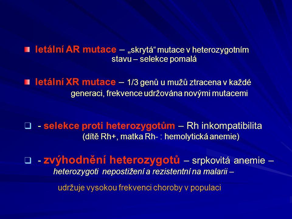 """letální AR mutace – """" skrytá"""" mutace v heterozygotním stavu – selekce pomalá letální XR mutace – 1/3 genů u mužů ztracena v každé generaci, frekvence"""