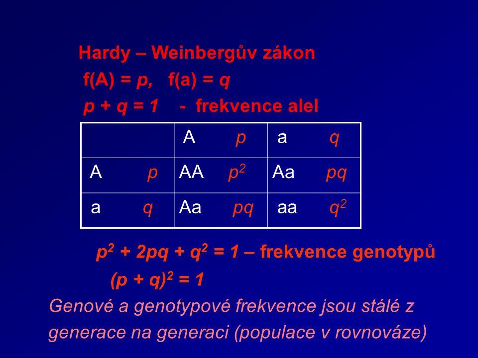 Hardy – Weinbergův zákon f(A) = p, f(a) = q p + q = 1 - frekvence alel A p a q A pAA p 2 Aa pq a qAa pq aa q 2 p 2 + 2pq + q 2 = 1 – frekvence genotyp