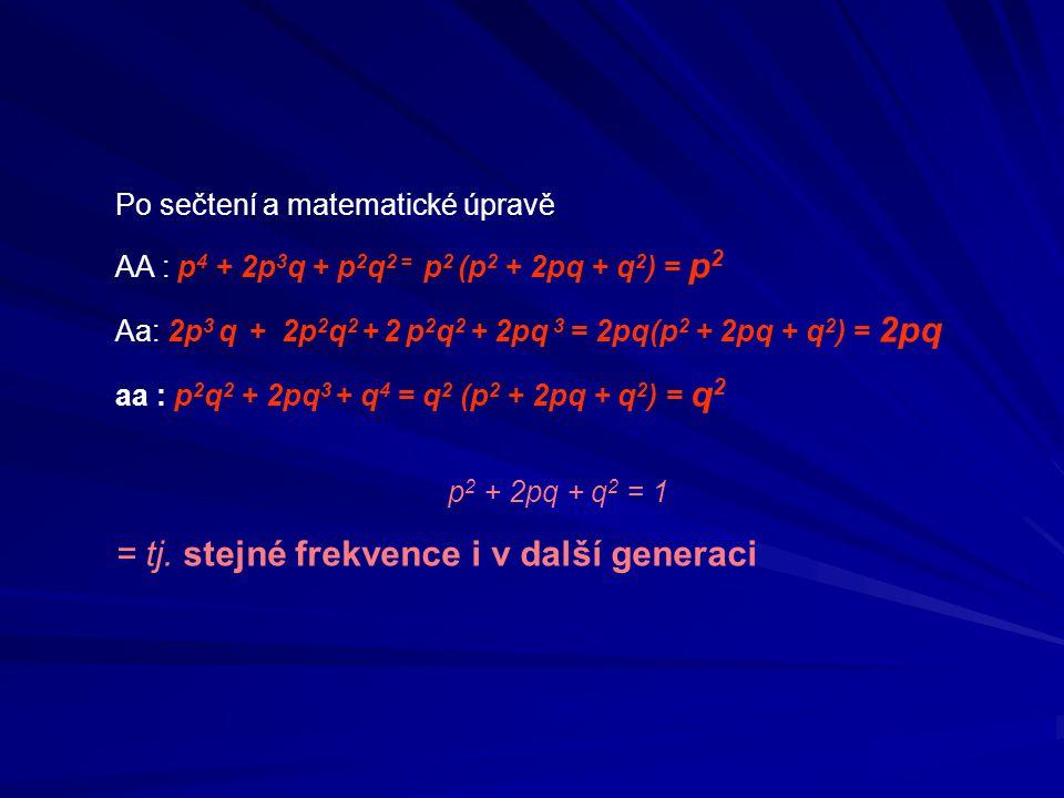 Pro 3 alely v lokusu: p + q + r = 1 (p + q + r ) 2 = 1 Př.:Frekvence alel A,B,0 v systému AB0 krevních skupin: p,q,r Frekvence genotypů: AA + A0 = p 2 + 2pr BB + B0= q 2 + 2qr AB = 2pq 0 = r 2 AR choroby : q 2 AD choroby: p 2 + 2pq Pro X vázané geny u ♂ p + q = 1 – je i rovnicí pro frekvenci genotypů u ♀ p 2 + 2pq + q 2 = 1