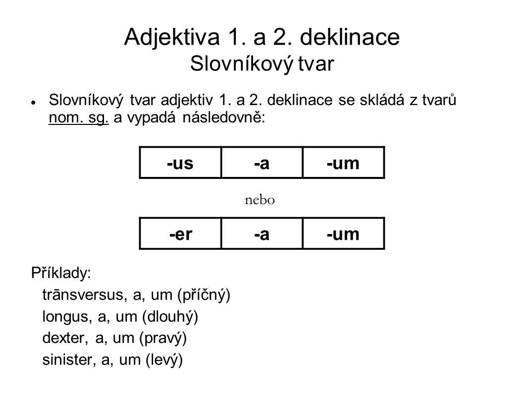 Adjektiva 1. a 2. deklinace Slovníkový tvar Slovníkový tvar adjektiv 1. a 2. deklinace se skládá z tvarů nom. sg. a vypadá následovně: Příklady: trāns