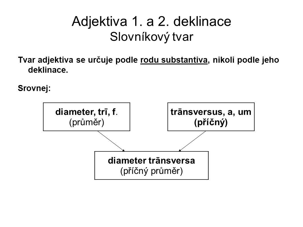 Adjektiva 1. a 2. deklinace Slovníkový tvar Tvar adjektiva se určuje podle rodu substantiva, nikoli podle jeho deklinace. Srovnej: diameter, trī, f. (