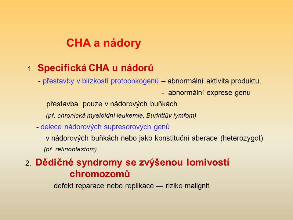 CHA a nádory 1. Specifická CHA u nádorů - přestavby v blízkosti protoonkogenů – abnormální aktivita produktu, - abnormální exprese genu přestavba pouz