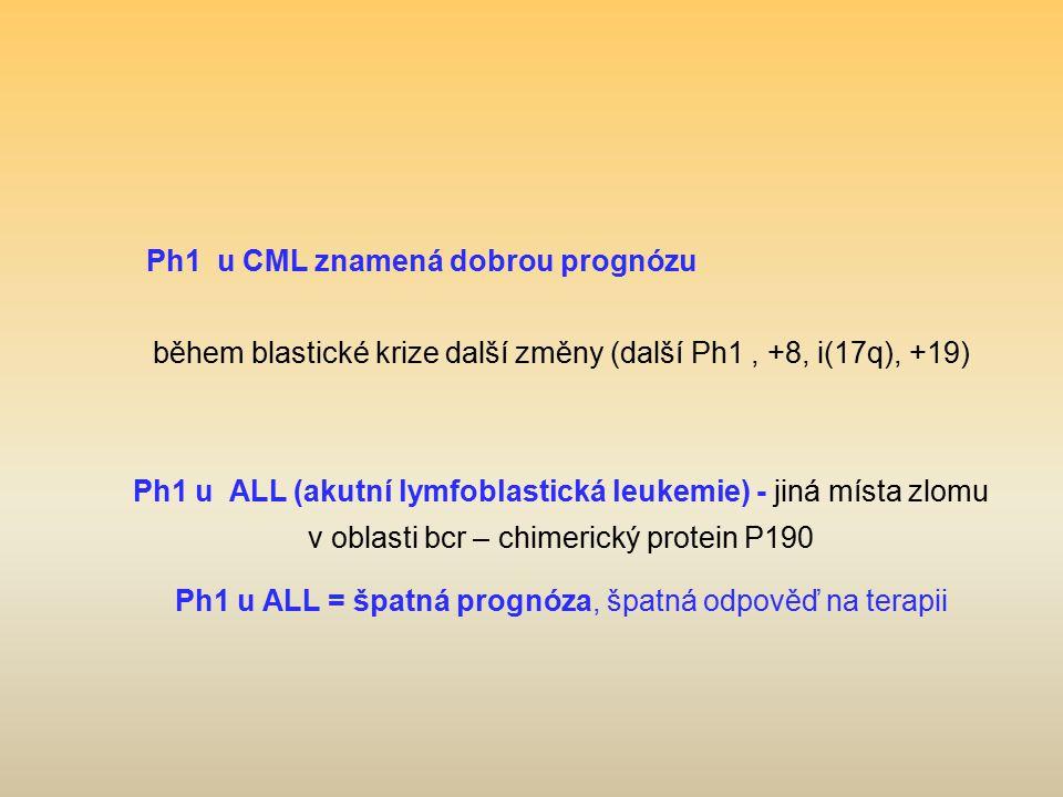 Ph1 u CML znamená dobrou prognózu během blastické krize další změny (další Ph1, +8, i(17q), +19) Ph1 u ALL (akutní lymfoblastická leukemie) - jiná mís