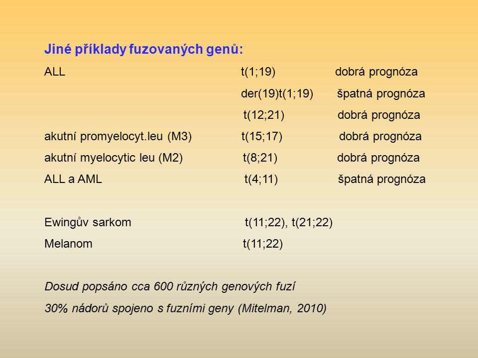 Jiné příklady fuzovaných genů: ALL t(1;19) dobrá prognóza der(19)t(1;19) špatná prognóza t(12;21) dobrá prognóza akutní promyelocyt.leu (M3) t(15;17)