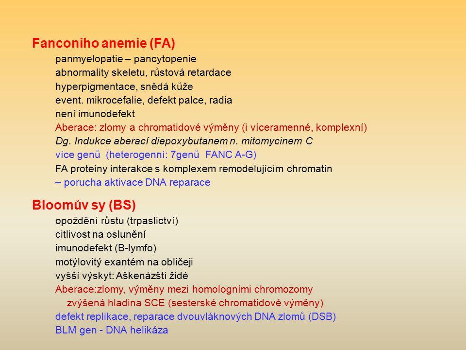 Fanconiho anemie (FA) panmyelopatie – pancytopenie abnormality skeletu, růstová retardace hyperpigmentace, snědá kůže event. mikrocefalie, defekt palc