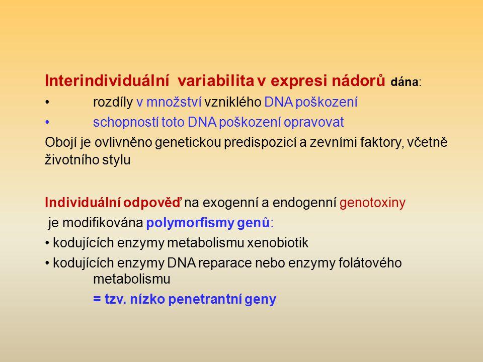 Interindividuální variabilita v expresi nádorů dána: rozdíly v množství vzniklého DNA poškození schopností toto DNA poškození opravovat Obojí je ovliv