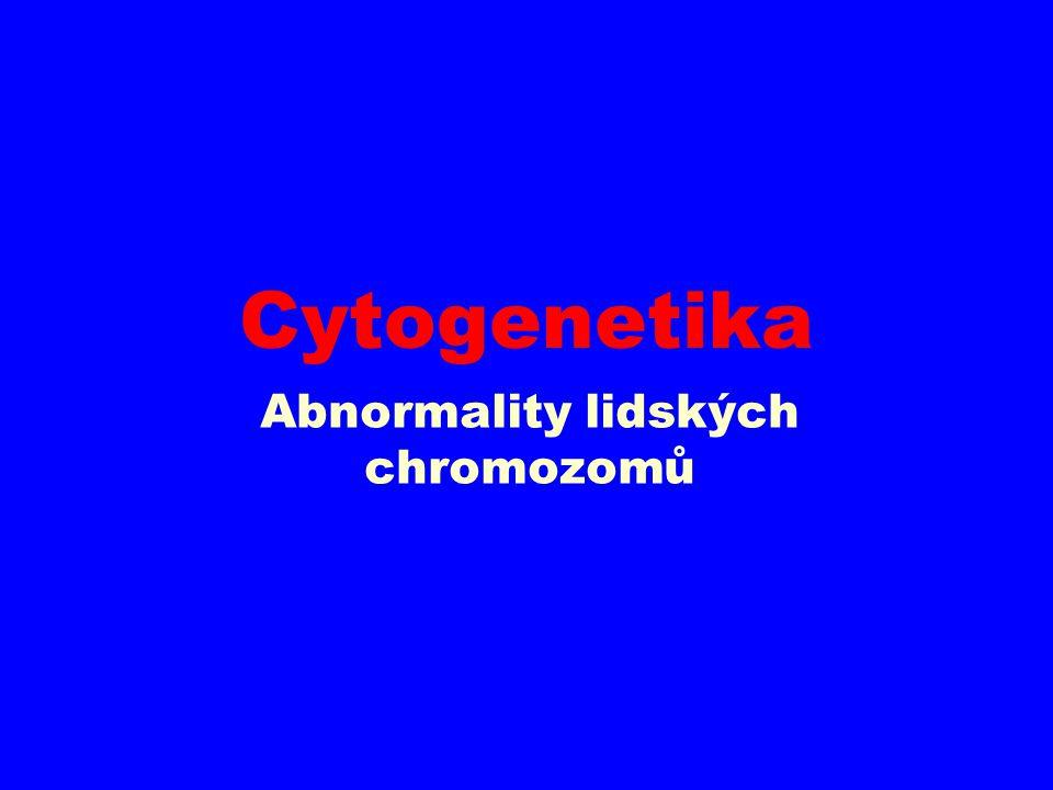 pericentrická inverze chromozomu 2 – balancovaná CHA