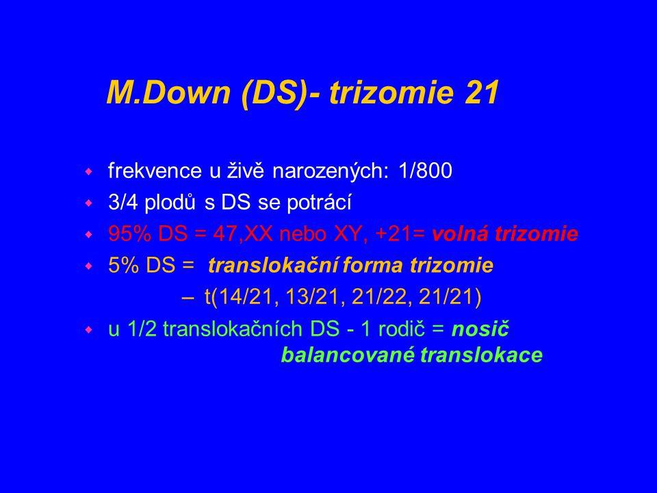 M.Down (DS)- trizomie 21 w frekvence u živě narozených: 1/800 w 3/4 plodů s DS se potrácí w 95% DS = 47,XX nebo XY, +21= volná trizomie w 5% DS = tran