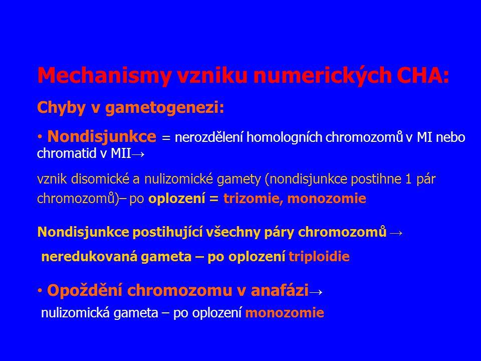 Mechanismy vzniku numerických CHA: Chyby v gametogenezi: Nondisjunkce = nerozdělení homologních chromozomů v MI nebo chromatid v MII → vznik disomické