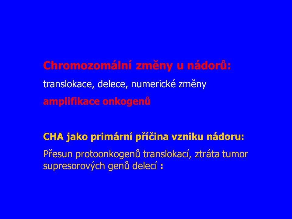 Chromozomální změny u nádorů: translokace, delece, numerické změny amplifikace onkogenů CHA jako primární příčina vzniku nádoru: Přesun protoonkogenů