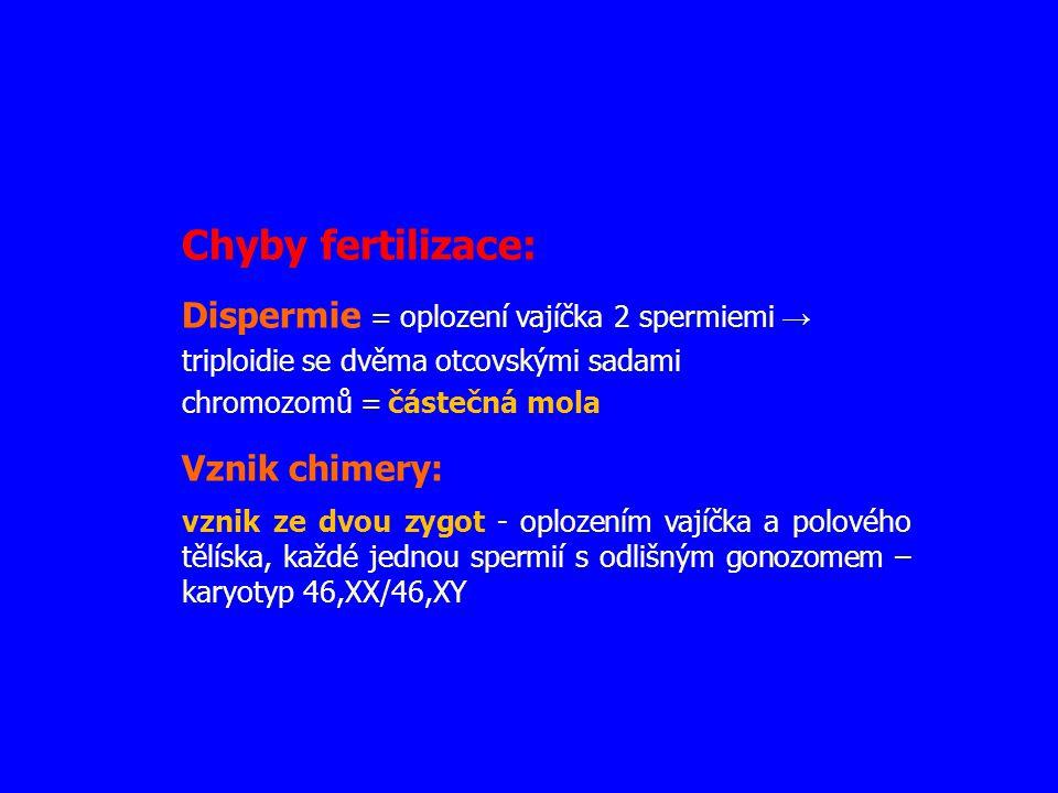 Chyby fertilizace: Dispermie = oplození vajíčka 2 spermiemi → triploidie se dvěma otcovskými sadami chromozomů = částečná mola Vznik chimery: vznik ze