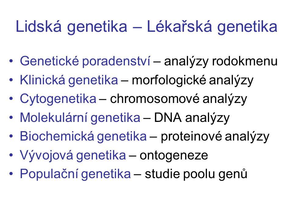 Lidská genetika – Lékařská genetika Genetické poradenství – analýzy rodokmenu Klinická genetika – morfologické analýzy Cytogenetika – chromosomové ana