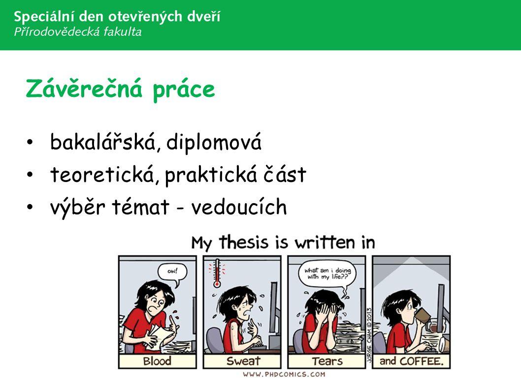 Závěrečná práce bakalářská, diplomová teoretická, praktická část výběr témat - vedoucích