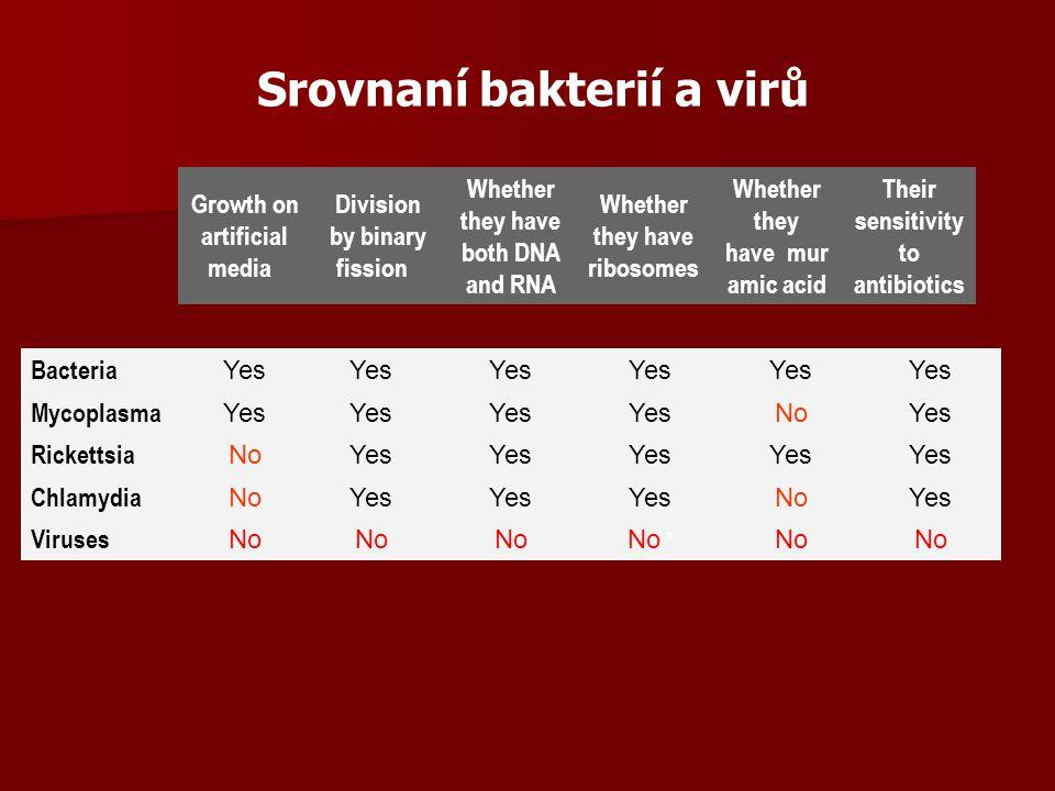 Genom ds DNA (není u rostlin, s výjimkou Caulomoviru) ds DNA (není u rostlin, s výjimkou Caulomoviru) ss DNA (živočišné viry – lineární, bakteriofágy – kružnicová) ss DNA (živočišné viry – lineární, bakteriofágy – kružnicová) ds RNA (charakteristická je segmentace genomu – uloženy ve společném kapsidu) ds RNA (charakteristická je segmentace genomu – uloženy ve společném kapsidu) ss RNA (častá segmentace – u rostlinných virů segmenty v oddělených kapsidech – infekce možná pouze po proniknutí všech částí) ss RNA (častá segmentace – u rostlinných virů segmenty v oddělených kapsidech – infekce možná pouze po proniknutí všech částí) velikost 10 6 – 10 9 daltonů velikost 10 6 – 10 9 daltonů Virový genom obsahuje od několika málo genů (virus tabákové mozaiky má pouhé 3 geny-6400 bp) až po několik tisíc (genom mimivirů obsahuje 1260 genů, tj.