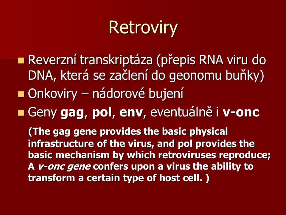 Retroviry Reverzní transkriptáza (přepis RNA viru do DNA, která se začlení do geonomu buňky) Reverzní transkriptáza (přepis RNA viru do DNA, která se začlení do geonomu buňky) Onkoviry – nádorové bujení Onkoviry – nádorové bujení Geny gag, pol, env, eventuálně i v-onc Geny gag, pol, env, eventuálně i v-onc (The gag gene provides the basic physical infrastructure of the virus, and pol provides the basic mechanism by which retroviruses reproduce; A v-onc gene confers upon a virus the ability to transform a certain type of host cell.